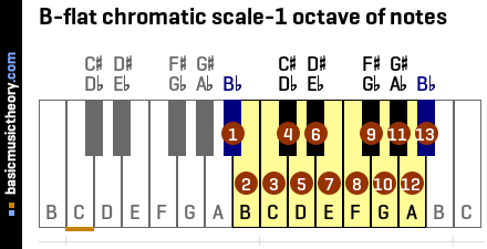 B-flat chromatic scale-1 octave of notes