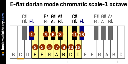 E-flat dorian mode chromatic scale-1 octave